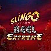 Slingo Bingo slingo reel extreme
